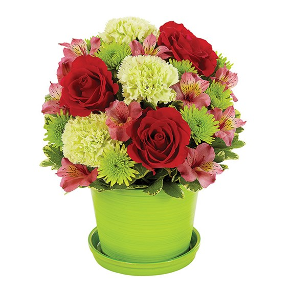 Sorbet Blooms flower bouquet (BF323-11KM)